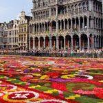 Цветочный ковер в Брюсселе-2018